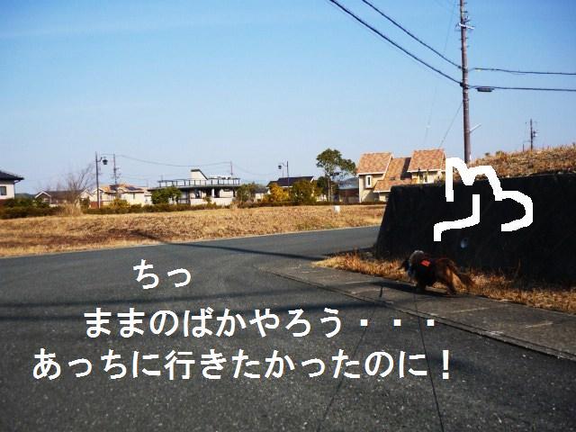 P1110677
