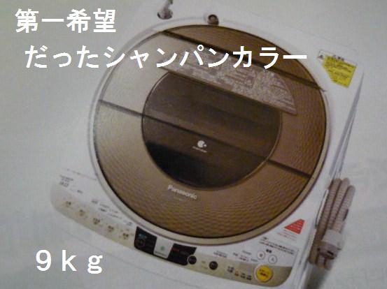 P1180974